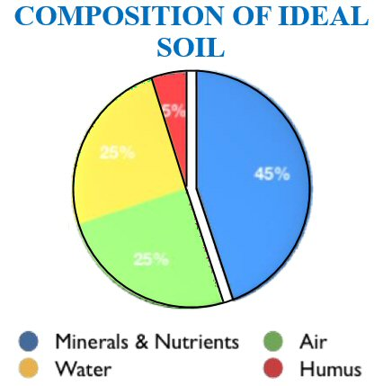 Agriculture-Composition-of-Soil